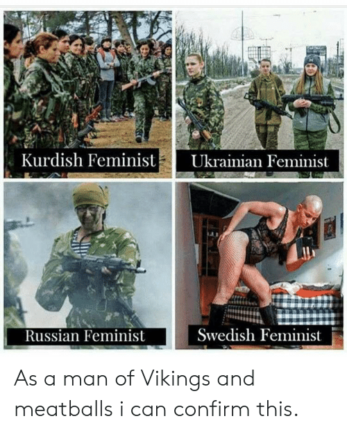 Vikings, Kurdish, and Dank Memes: Kurdish FeministUkrainian Feminist  Swedish Feminist  Russian Feminist As a man of Vikings and meatballs i can confirm this.