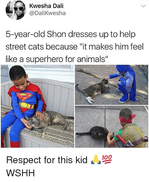 "Animals, Cats, and Memes: Kwesha Dali  @DaliKwesha  5-year-old Shon dresses up to help  street cats because ""it makes him feel  like a superhero for animals"" Respect for this kid 🙏💯 WSHH"