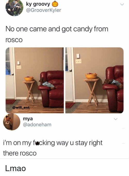 Candy, Lmao, and Memes: ky groovy  @GrooverKyler  No one came and got candy from  rosco  @will_ent  mya  @adoneham  i'm on my fwcking way u stay right  there rosco Lmao