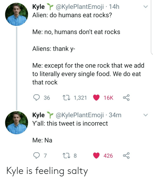 Food, Being Salty, and Aliens: Kyle@KylePlantEmoji 14h  Alien: do humans eat rocks?  Me: no, humans don't eat rocks  Aliens: thank y-  Me: except for the one rock that we add  to literally every single food. We do eat  that rock  t1,321  36  16K  Kyle @KylePlantEmoji 34m  Y'all: this tweet is incorrect  Me: Na  t 8  7  426 Kyle is feeling salty