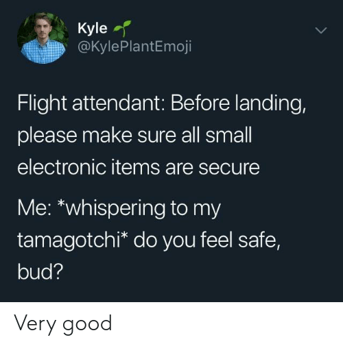 Flight, Good, and Flight Attendant: Kyle  @KylePlantEmoji  Flight attendant: Before landing,  please make sure all small  electronic items are secure  Me: *whispering to my  tamagotchi* do you feel safe,  bud? Very good