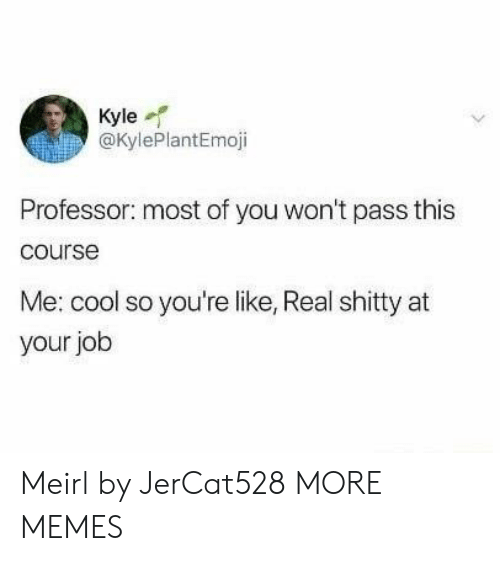 Dank, Memes, and Target: Kyle  @KylePlantEmoji  Professor: most of you won't pass this  course  Me: cool so you're like, Real shitty at  your job Meirl by JerCat528 MORE MEMES