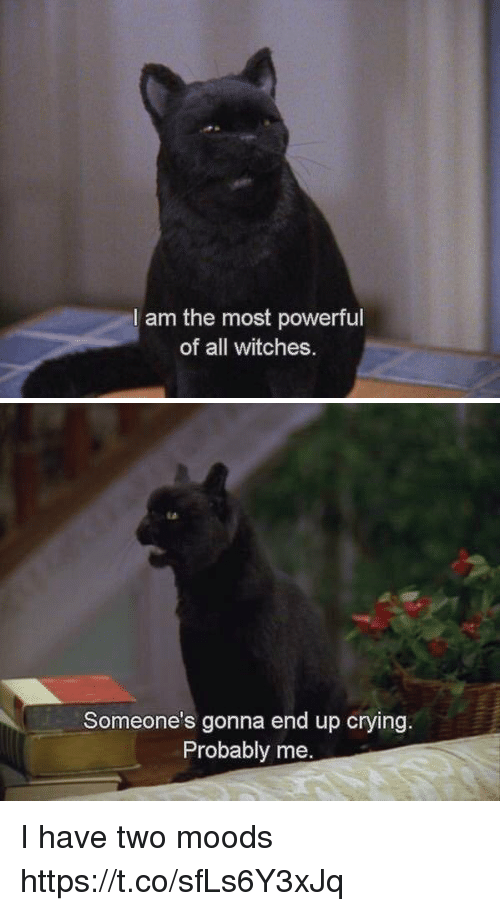 Crying, Girl Memes, and Powerful: l am the most powerful  of all witches   Someone's gonna end up crying  Probably me. I have two moods https://t.co/sfLs6Y3xJq
