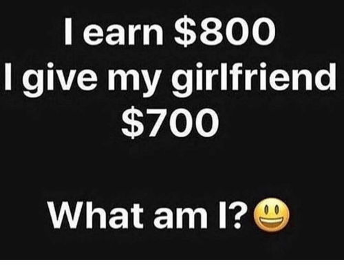Memes, Girlfriend, and 🤖: l earn $800  I give my girlfriend  $700  What am I?