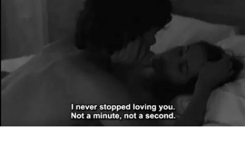 Never, You, and Loving You: l never stopped loving you  Not a minute, not a second.
