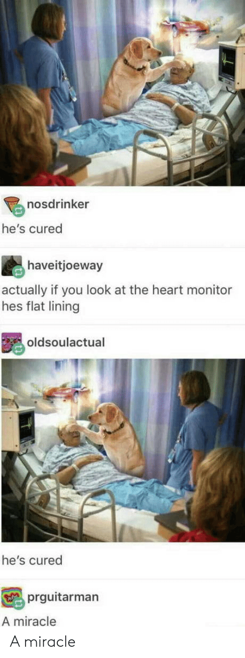 Heart, You, and The Heart: l-  nosdrinker  he's cured  haveitjoeway  actually if you look at the heart monitor  hes flat lining  oldsoulactual  he's cured  prguitarman  A miracle A miracle