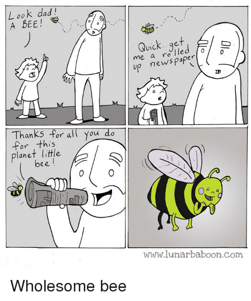 Dad, News, and Wholesome: L ook dad!  A BEE!  Quick...get  me a ro e  V1C  up news paper  Thanks For all You do  for this  planet little  bee  www.lunarbaboon.com