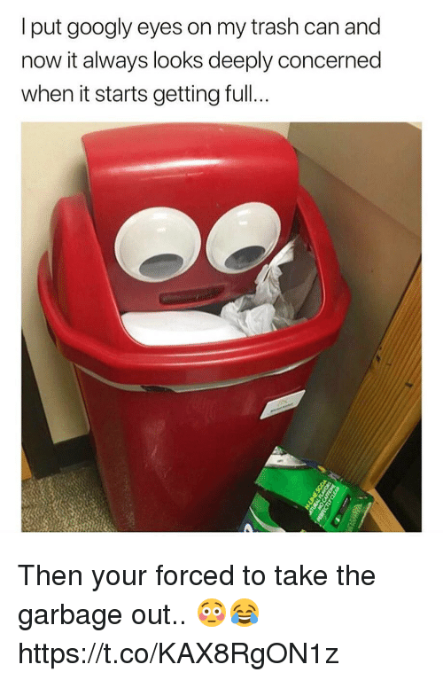 Trash, Garbage, and Can: l put googly eyes on my trash can and  now it always looks deeply concerned  when it starts getting full. Then your forced to take the garbage out.. 😳😂 https://t.co/KAX8RgON1z