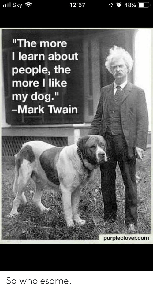 """Mark Twain, Wholesome, and Dog: l Sky  12:57  48%  """"The more  I learn about  people, the  more I like  my dog.""""  -Mark Twain  II  purpleclover.com So wholesome."""