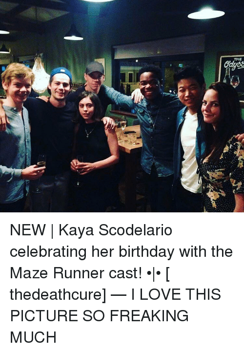 l the new kaya scodelario celebrating her birthday with 16531270 ✅ 25 best memes about the maze runner cast the maze runner,Funny Maze Runner Memes