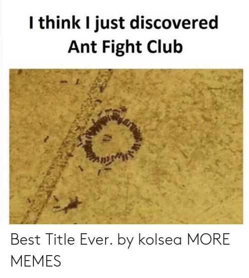 Club, Dank, and Fight Club: l think I just discovered  Ant Fight Club Best Title Ever. by kolsea MORE MEMES