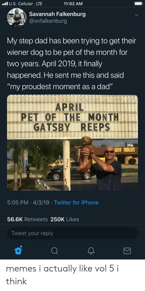 "Dad, Iphone, and Memes: l U.S. Cellular LTE  11:02 AM  Savannah Falkenburg  @snfalkenburg  My step dad has been trying to get their  wiener dog to be pet of the month for  two years. April 2019, it finally  happened. He sent me this and said  ""my proudest moment as a dad""  APRIL  PET OF ITHE MONTH  GATSBY REEPS  5:05 PM 4/3/19 Twitter for iPhone  56.6K Retweets 250K Likes  Tweet your reply memes i actually like vol 5 i think"