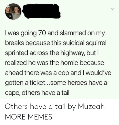 Dank, Homie, and Memes: l was going 70 and slammed on my  breaks because this suicidal squirrel  sprinted across the highway, but l  realized he was the homie because  ahead there was a cop and I would've  gotten a ticket...some heroes have a  cape, others have a tail Others have a tail by Muzeah MORE MEMES