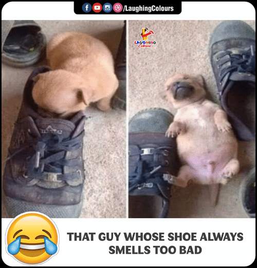 Bad, Indianpeoplefacebook, and Shoe: LA  HINO  THAT GUY WHOSE SHOE ALWAYS  SMELLS TOO BAD