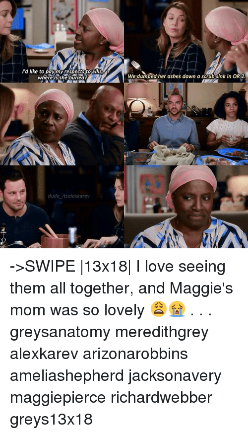 Dude, Love, and Memes: l'a like to paymy cespects to Ells  wherelis sheburied?  We dumped her ashes down a scrubsink in OR 2  dude itsalexkarev ->SWIPE |13x18| I love seeing them all together, and Maggie's mom was so lovely 😩😭 . . . greysanatomy meredithgrey alexkarev arizonarobbins ameliashepherd jacksonavery maggiepierce richardwebber greys13x18