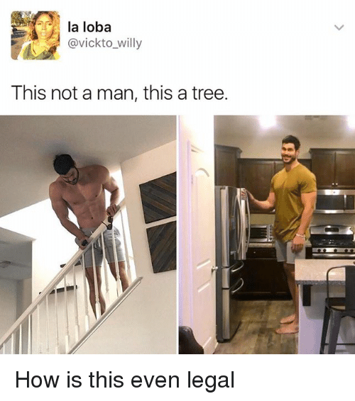 Memes, Tree, and 🤖: la loba  @vick to willy  This not a man, this a tree. How is this even legal