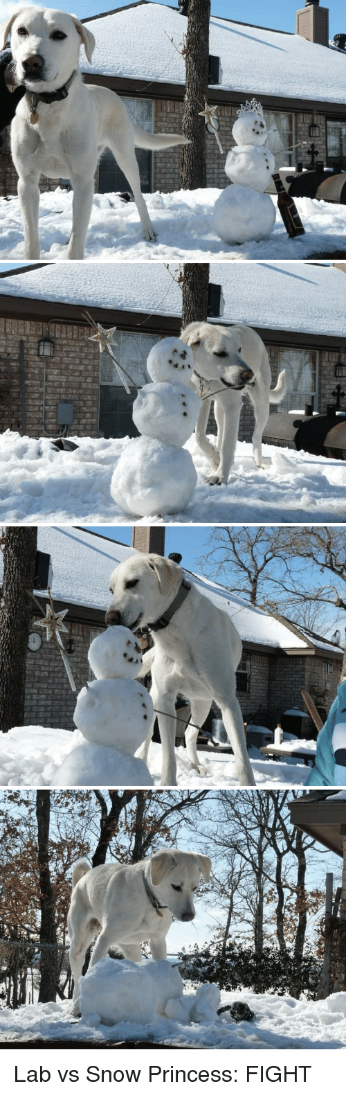 Funny, Princess, and Snow: Lab vs Snow Princess: FIGHT