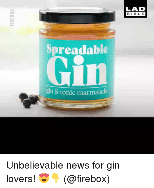 Memes, News, and 🤖: LAD  BIBL E  Spreadable  Gin  gin & tonic marmalade Unbelievable news for gin lovers! 😍👇 (@firebox)