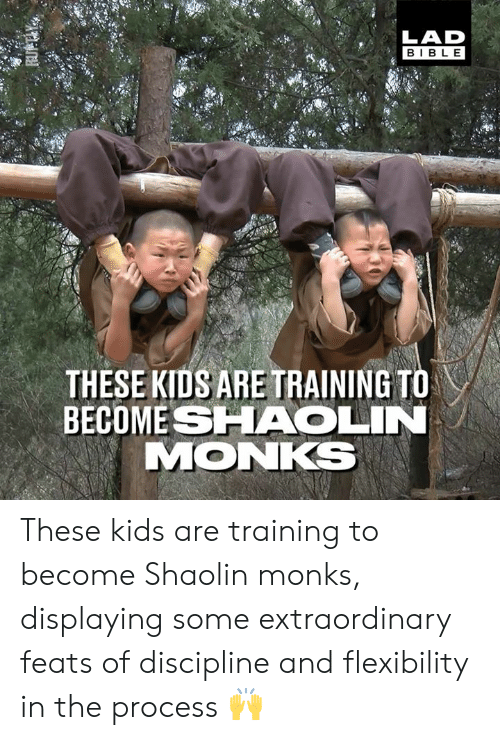 Dank, Kids, and 🤖: LAD  BIBL E  THESE KIDS ARE TRAINING TO  BECOME SHAOLIN  MONKS These kids are training to become Shaolin monks, displaying some extraordinary feats of discipline and flexibility in the process 🙌