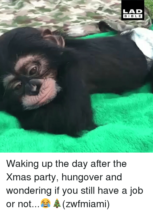 Memes, Party, and 🤖: LAD  BIBL E Waking up the day after the Xmas party, hungover and wondering if you still have a job or not...😂🎄(zwfmiami)