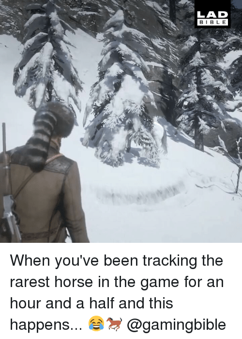 Memes, The Game, and Game: LAD  BIBL E When you've been tracking the rarest horse in the game for an hour and a half and this happens... 😂🐎 @gamingbible