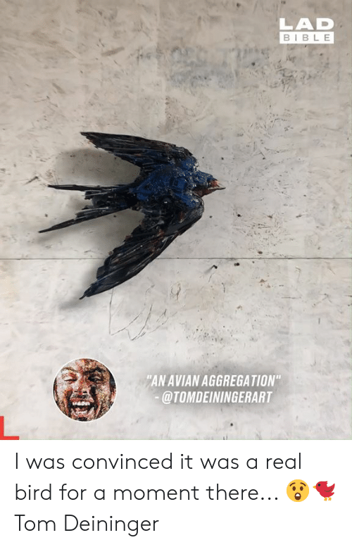 "Dank, Bible, and 🤖: LAD  BIBLE  ""AN AVIAN AGGREGATION""  @TOMDEININGERART I was convinced it was a real bird for a moment there... 😲🐦  Tom Deininger"