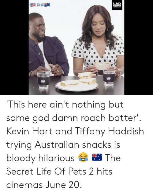 Dank, God, and Kevin Hart: LAD  BIBLE  AUSTRALIA  AB 'This here ain't nothing but some god damn roach batter'. Kevin Hart and Tiffany Haddish trying Australian snacks is bloody hilarious 😂 🇦🇺  The Secret Life Of Pets 2 hits cinemas June 20.