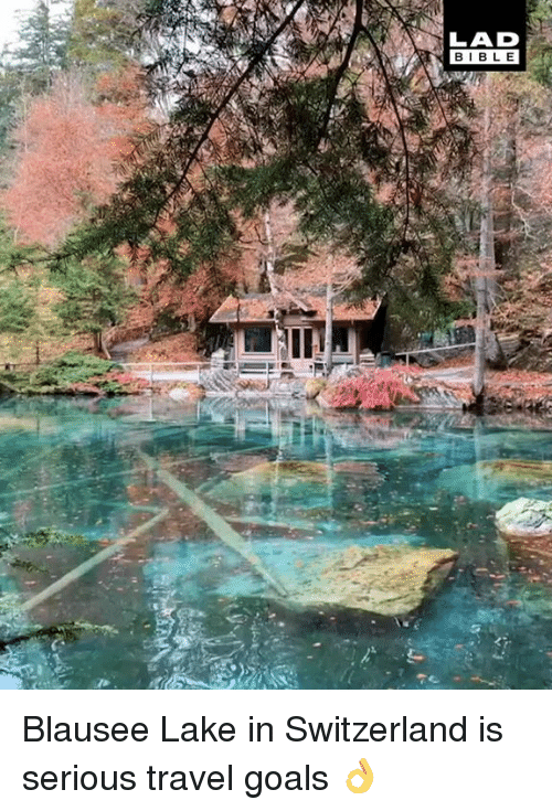 Dank, Goals, and Bible: LAD  BIBLE Blausee Lake in Switzerland is serious travel goals 👌