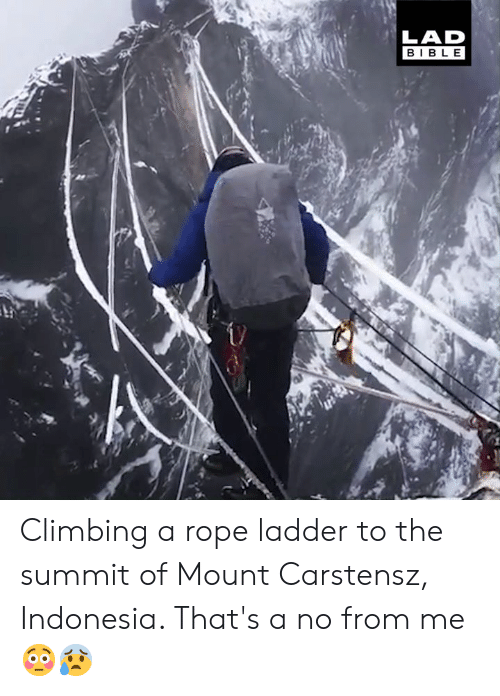 Climbing, Dank, and Bible: LAD  BIBLE Climbing a rope ladder to the summit of Mount Carstensz, Indonesia. That's a no from me 😳😰