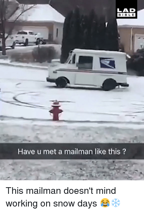Dank, Bible, and Snow: LAD  BIBLE  Have u met a mailman like this? This mailman doesn't mind working on snow days 😂❄️