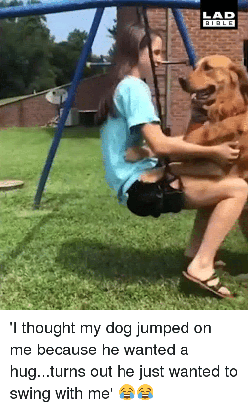 Dank, Bible, and Jumped: LAD  BIBLE 'I thought my dog jumped on me because he wanted a hug...turns out he just wanted to swing with me' 😂😂