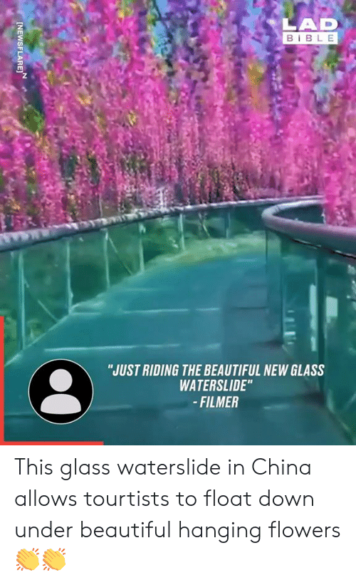 """Beautiful, Dank, and China: LAD  BIBLE  """"JUST RIDING THE BEAUTIFUL NEW GLASS  WATERSLIDE""""  -FILMER  INEWSFLARE This glass waterslide in China allows tourtists to float down under beautiful hanging flowers 👏👏"""
