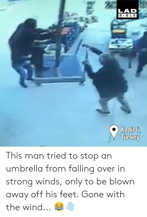 Dank, Bible, and Turkey: LAD  BIBLE  Kadirl,  Turkey This man tried to stop an umbrella from falling over in strong winds, only to be blown away off his feet. Gone with the wind... 😂💨