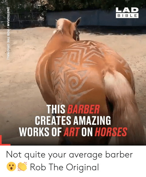 Barber, Dank, and Horses: LAD  BIBLE  THIS BARBER  CREATES AMAZING  WORKS OF ART ON HORSES  [INSTAGRAM /ROB THE ORIGINAL] Not quite your average barber 😮👏  Rob The Original
