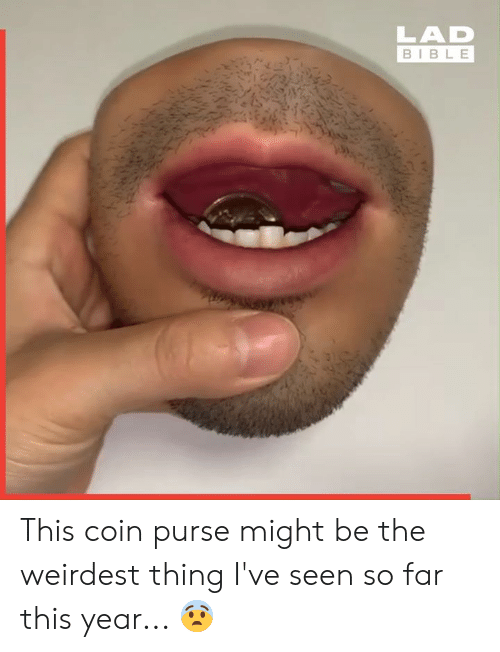 Dank, Bible, and 🤖: LAD  BIBLE This coin purse might be the weirdest thing I've seen so far this year... 😨