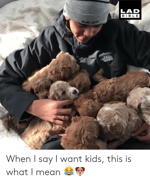 Dank, Bible, and Kids: LAD  BIBLE When I say I want kids, this is what I mean 😂🐶