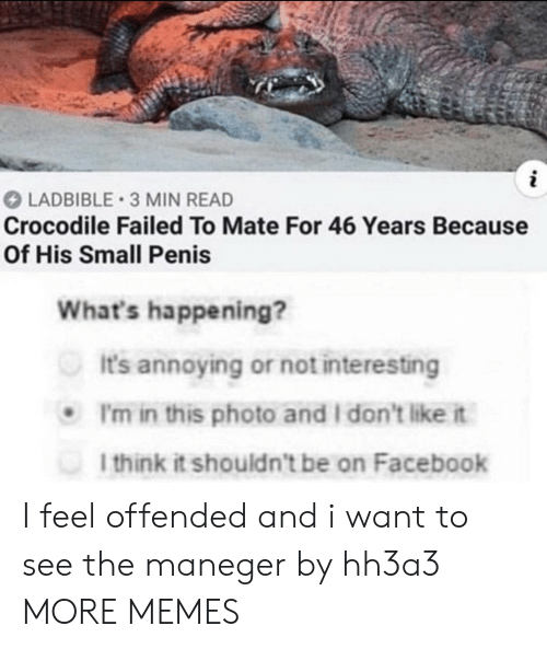 Dank, Facebook, and Memes: LADBIBLE 3 MIN READ  Crocodile Failed To Mate For 46 Years Because  Of His Small Penis  What's happening?  It's annoying or not interesting  I'm in this photo and I don't like it  I think it shouldn't be on Facebook I feel offended and i want to see the maneger by hh3a3 MORE MEMES