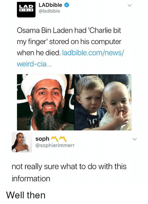 Charlie, News, and Osama Bin Laden: LADbible  LAD  BLaladbible  Osama Bin Laden had Charlie bit  my finger' stored on his computer  when he died. ladbible.com/news/  weird-cia...  sooh 서 서  @sophierimmerr  not really sure what to do with this  information Well then