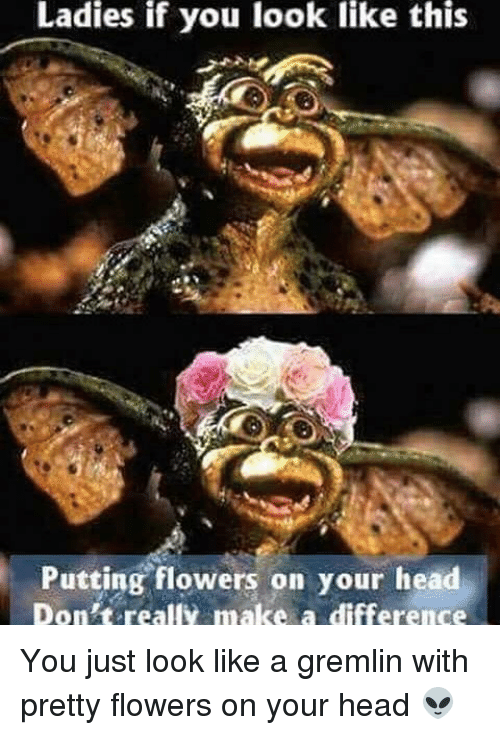 Ladies if you look like this putting flowers on your head dont head memes and flowers ladies if you look like this putting flowers on mightylinksfo