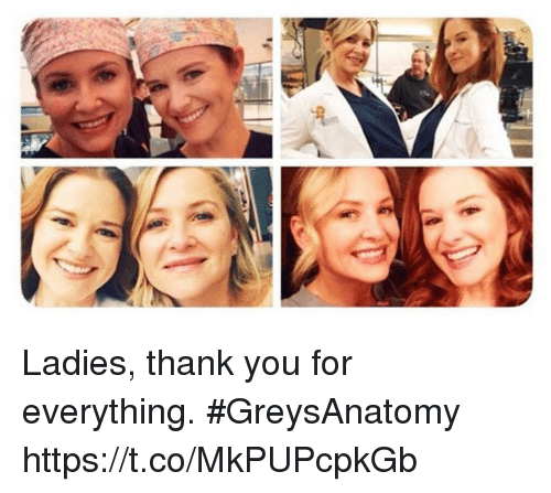 Memes, Thank You, and 🤖: Ladies, thank you for everything. #GreysAnatomy https://t.co/MkPUPcpkGb