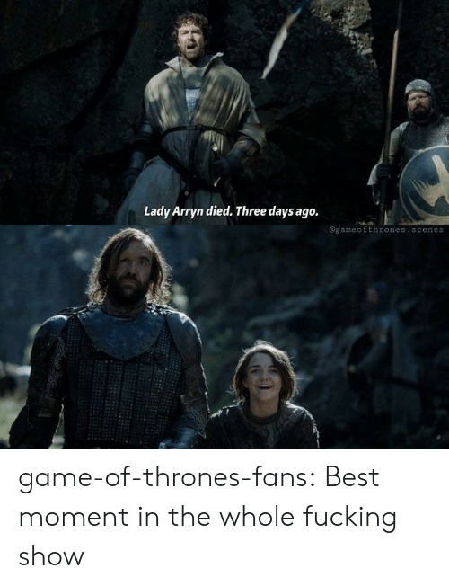 Fucking, Game of Thrones, and Tumblr: Lady Arryn died. Three days ago.  @gameofthrones.scenes game-of-thrones-fans:  Best moment in the whole fucking show