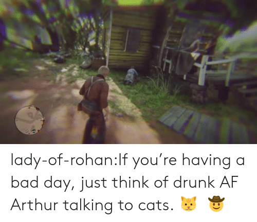 Af, Arthur, and Bad: lady-of-rohan:If you're having a bad day, just think of drunk AF Arthur talking to cats. 🐱    🤠