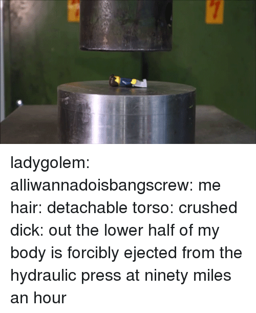 Target, Tumblr, and Blog: ladygolem:  alliwannadoisbangscrew:  me   hair: detachable torso: crushed dick: out the lower half of my body is forcibly ejected from the hydraulic press at ninety miles an hour
