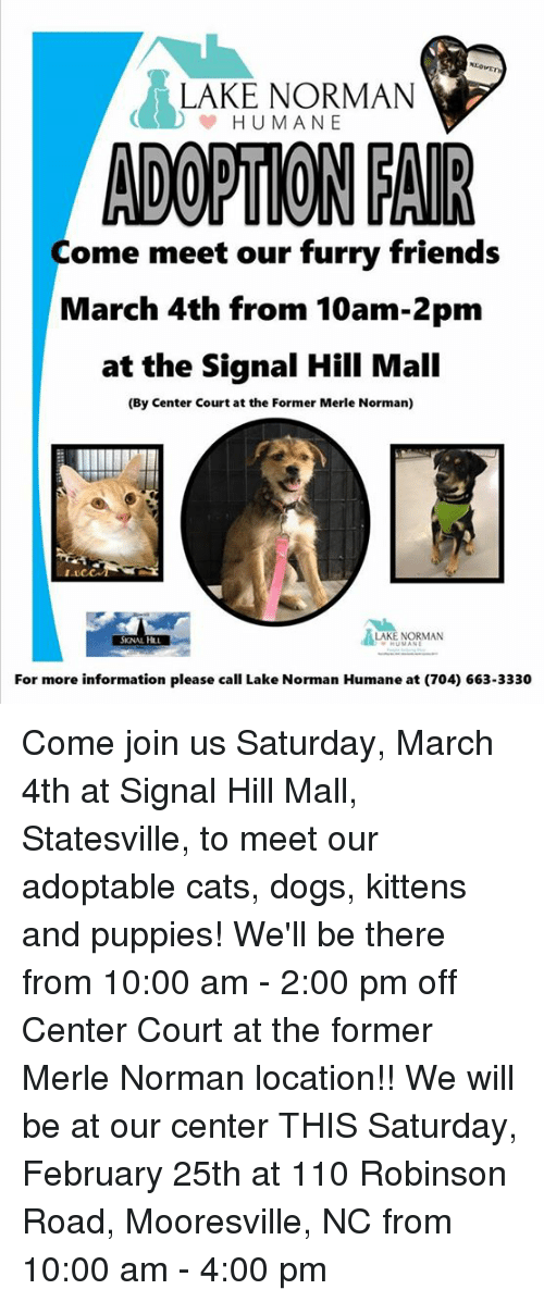 Lake Norman Humane Adortion Fair Come Meet Our Furry Friends March