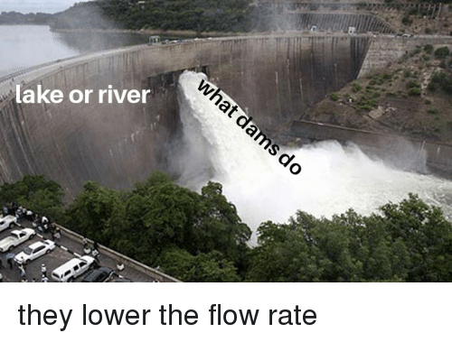 Dank Memes, River, and They: lake or river
