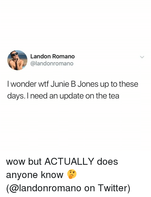 Memes, Twitter, and Wow: Landon Romano  @landonromano  I wonder wtf Junie B Jones up to these  days. I need an update on the tea wow but ACTUALLY does anyone know 🤔 (@landonromano on Twitter)