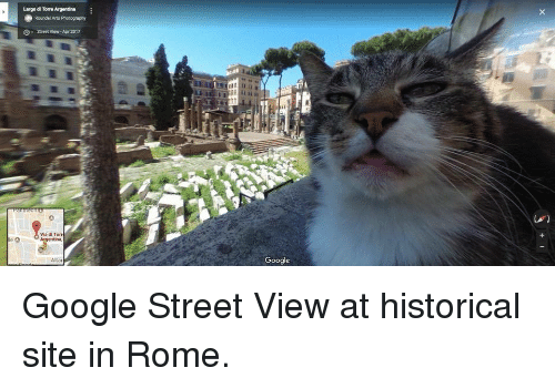 Google, Argentina, and Photography: Largo di Torre Argentina  Roundel Arts Photography  G  Street View- Ape 2017  Via di Torr  Argentina,  Google  Alta Google Street View at historical site in Rome.
