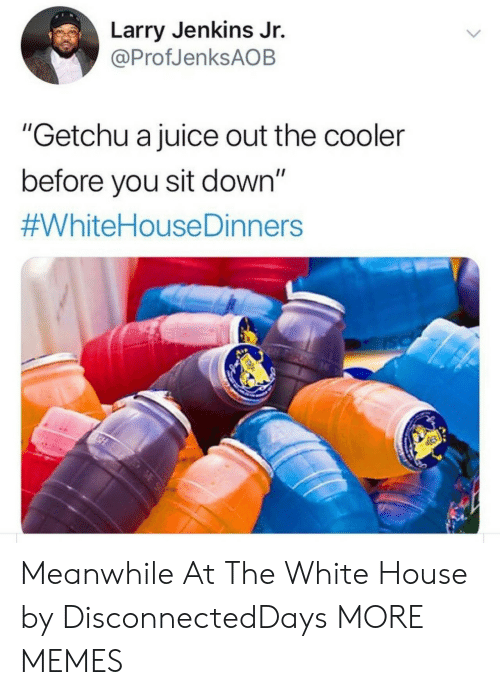 """Dank, Juice, and Memes: Larry Jenkins Jr.  @ProfJenksAOB  """"Getchu a juice out the cooler  before you sit down""""  Meanwhile At The White House by DisconnectedDays MORE MEMES"""
