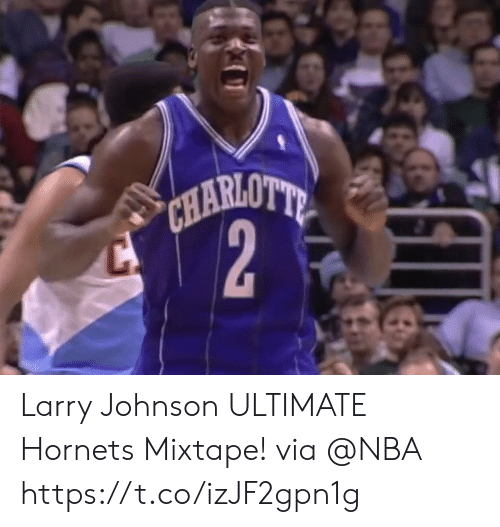 Memes, Nba, and Mixtape: Larry Johnson ULTIMATE Hornets Mixtape!  via @NBA https://t.co/izJF2gpn1g