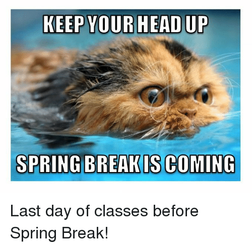 Biggest spring break week 2016-1877